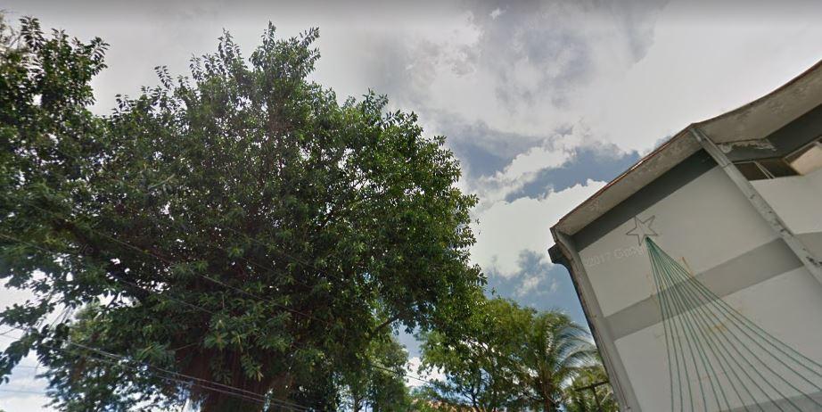 Árvore cai sobre fiação e deixa Prefeitura de Simões Filho sem energia