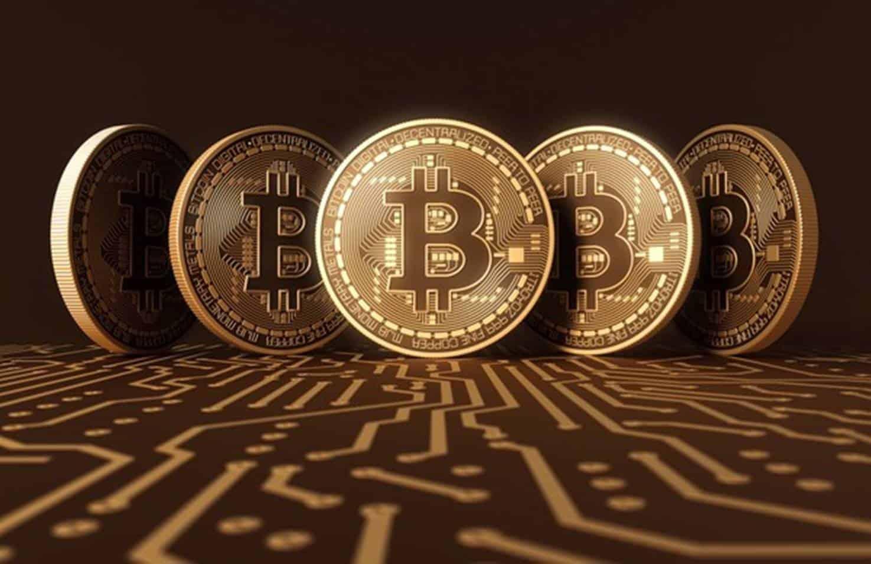 saiba tudo sobre sobre o Bitcoin com um especialista