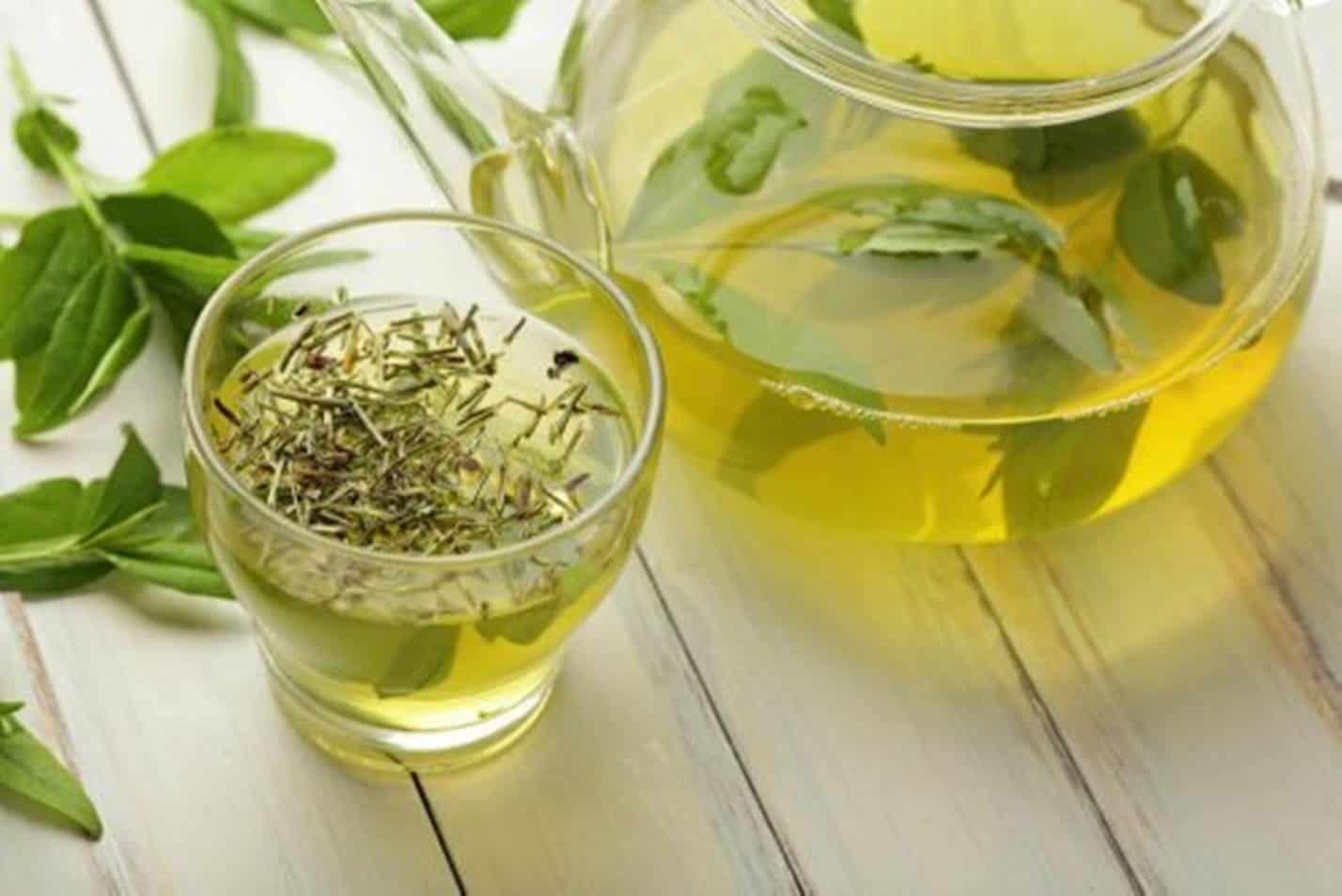 5 boas receitas de Chá Verde para perder gordura abdominal