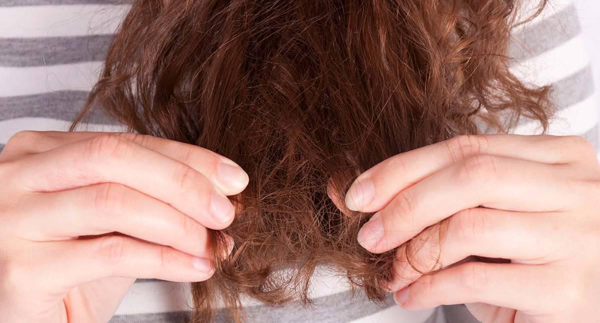 Aprenda os motivos de quebra do cabelo e também como recuperá-lo