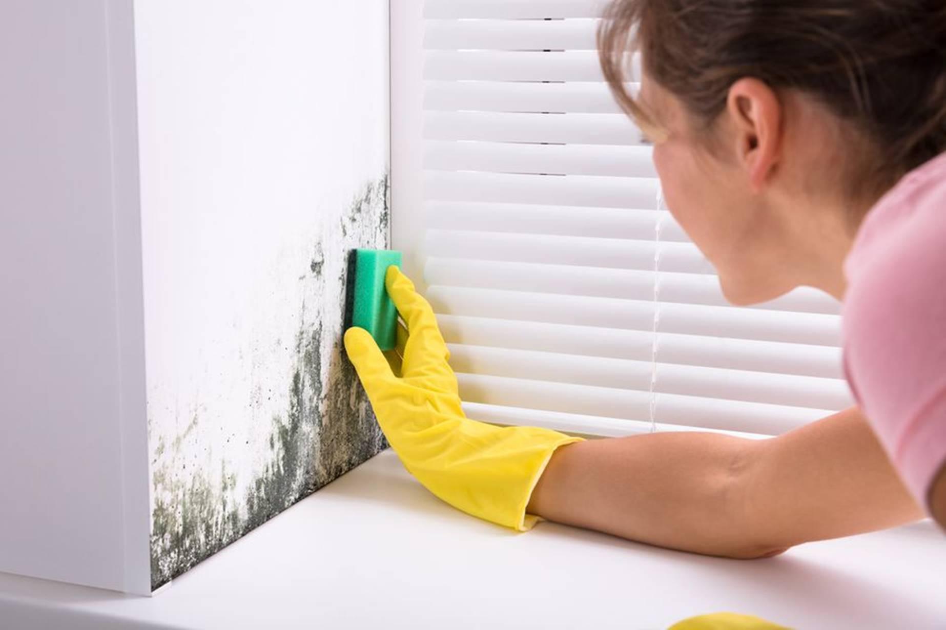 Truques caseiros para remover umidades da casa