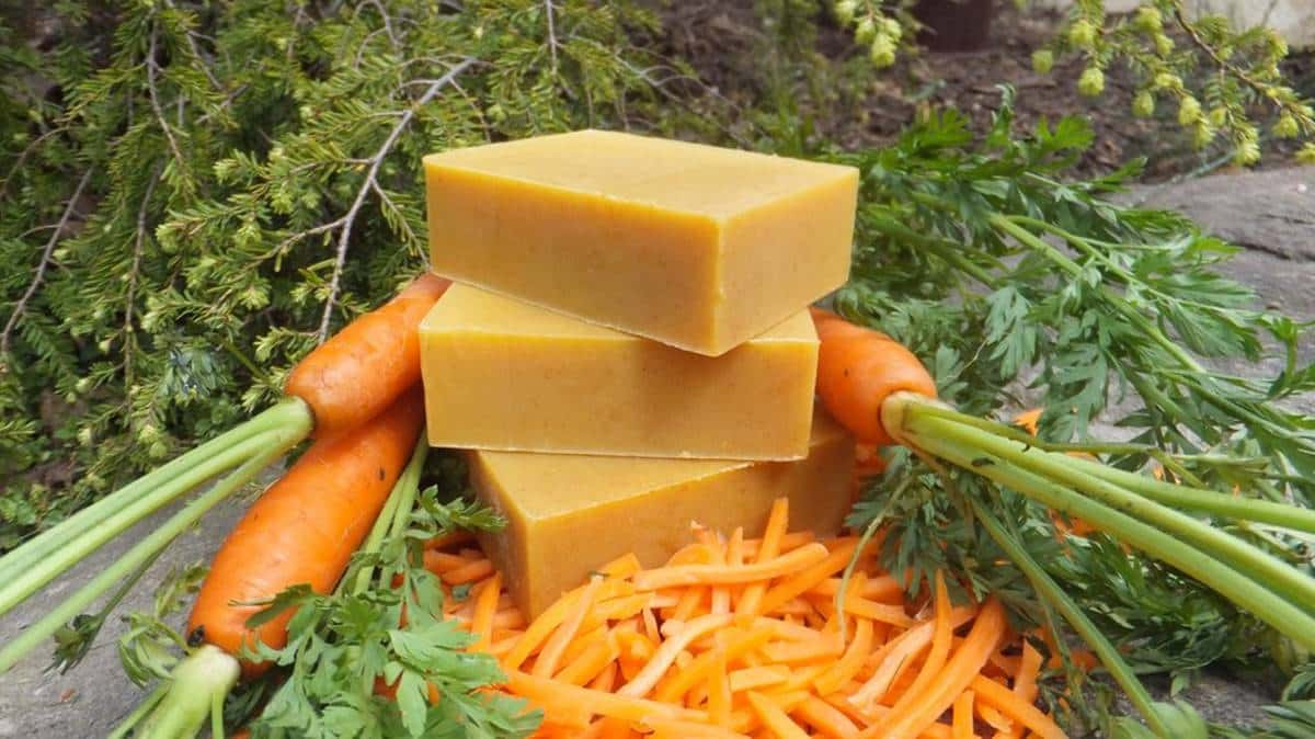 Sabonete caseiro de cenoura que promove muitos benefícios para pele