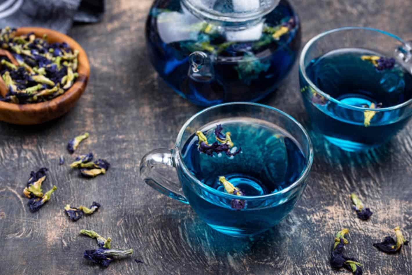 Chá azul: descubra os novos benefícios desta bebida para perder peso