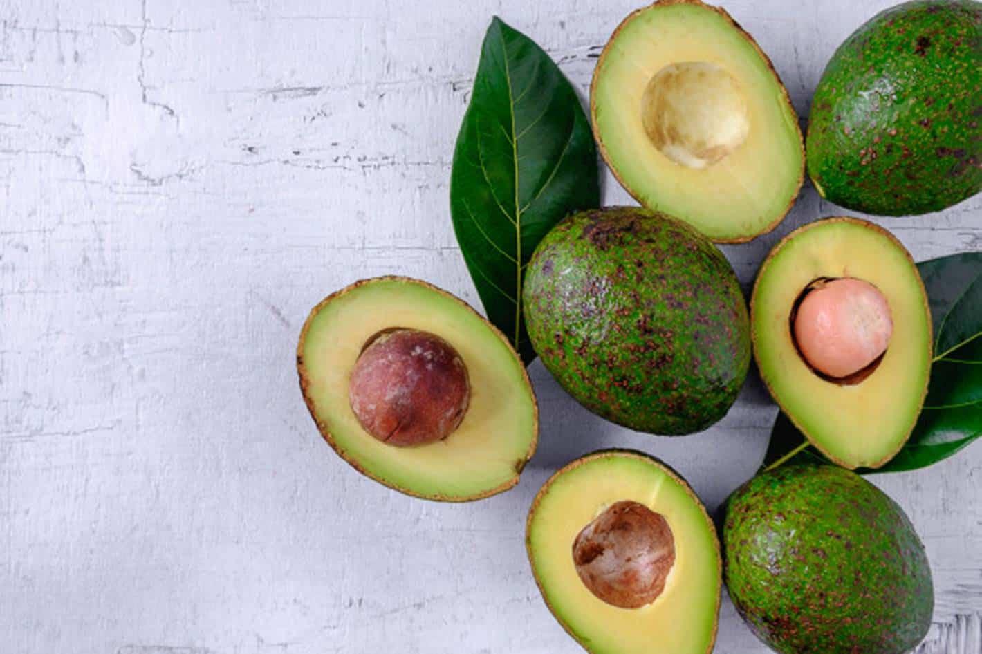 Descubra os benefícios para a saúde do chá de folha de abacate