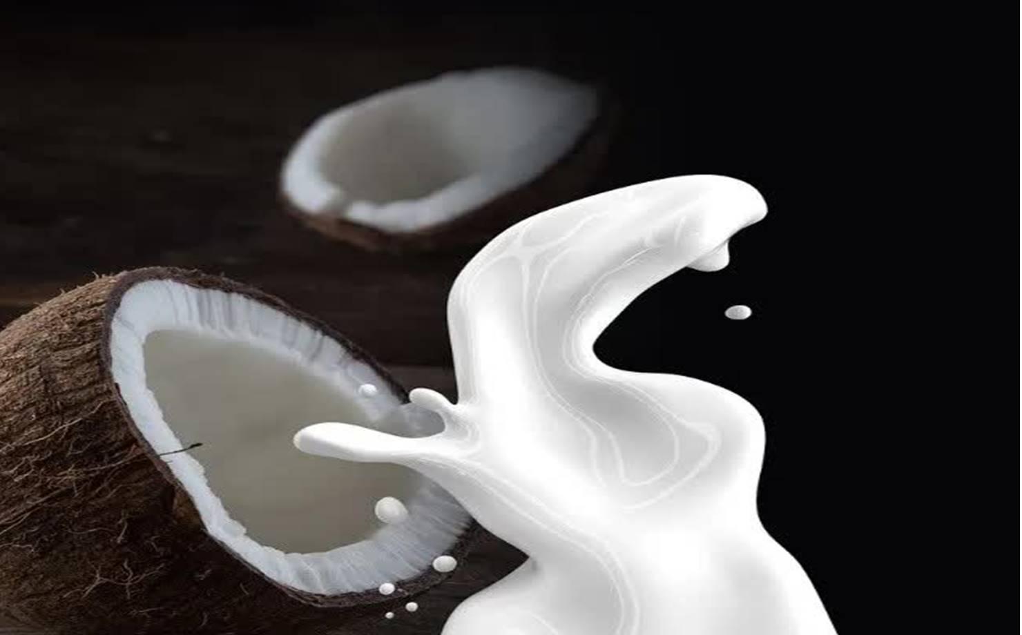 Coco e leite de coco em imagem sombreada