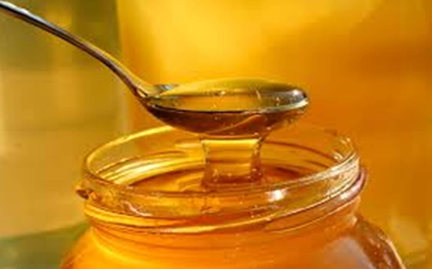 Razões poderosas para comer mel natural todos os dias