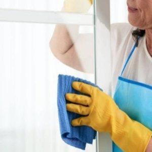 Mulher Limpando Vidros da Janela